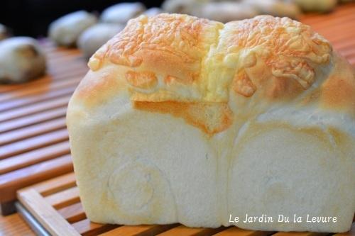 チーズ食パン、しっとりにできるのだ_f0329586_11492928.jpg