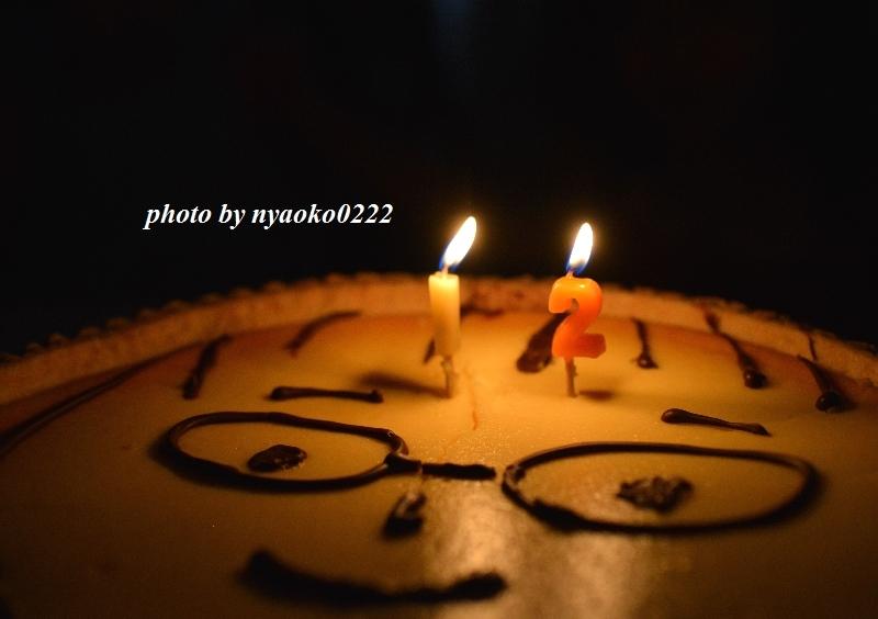 e0365414_16415968.jpg