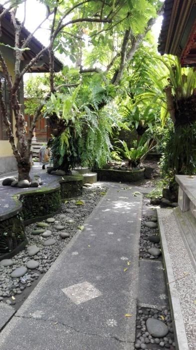 借りている部屋の庭_e0155231_22435453.jpg