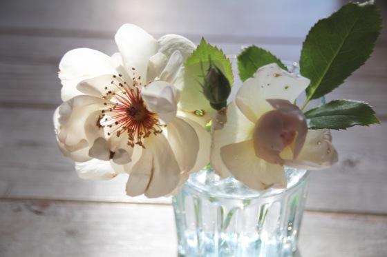 花だらけ_b0132338_07472534.jpg
