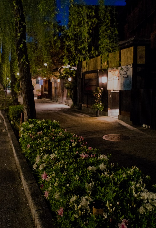ZEF Kyoto Gion Shirakawa・・・紫陽花咲く頃_e0363038_11134681.jpg