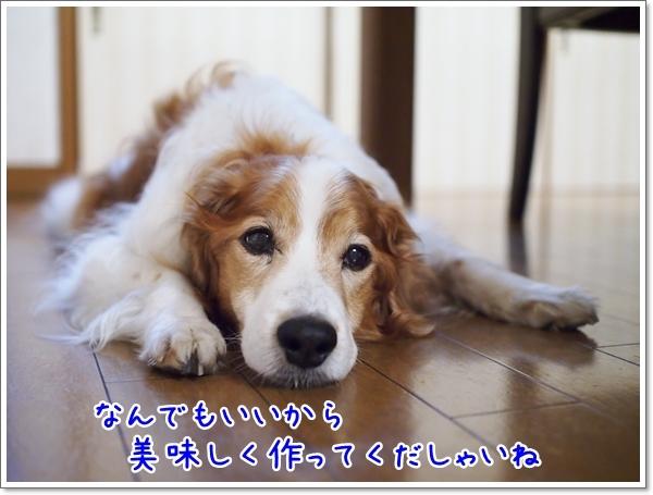 d0013149_00565347.jpg