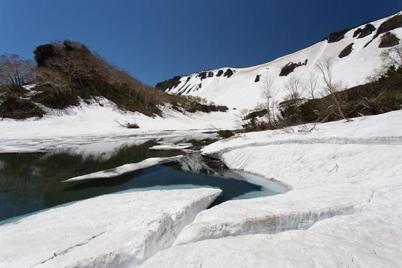 期間限定!三笠新道から白雲岳、緑岳へ_d0198793_17422082.jpg