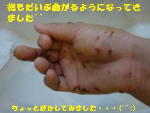 f0121712_23030607.jpg