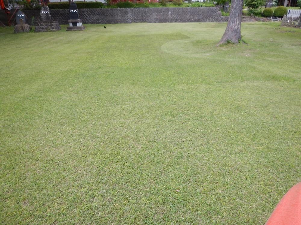 境内芝刈り作業_c0111229_19364520.jpg