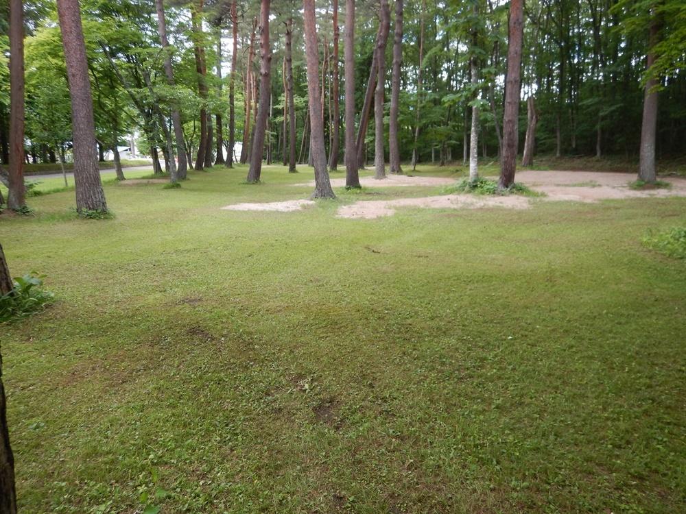 境内芝刈り作業_c0111229_19365766.jpg