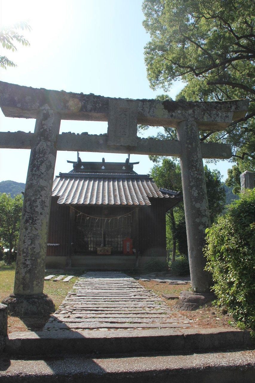 大楠神社と本庄の大楠_c0011649_22395300.jpg