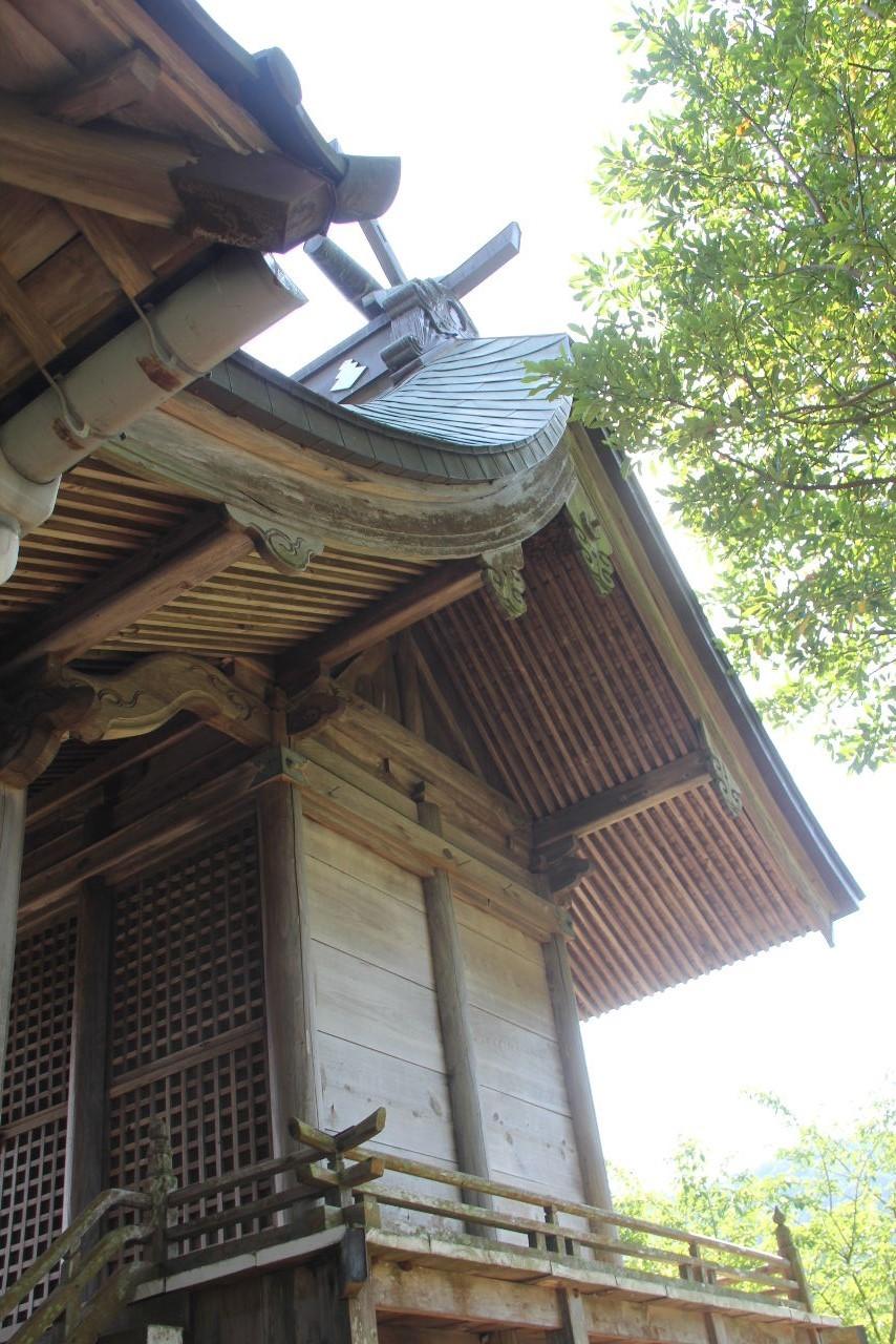 大楠神社と本庄の大楠_c0011649_22412025.jpg