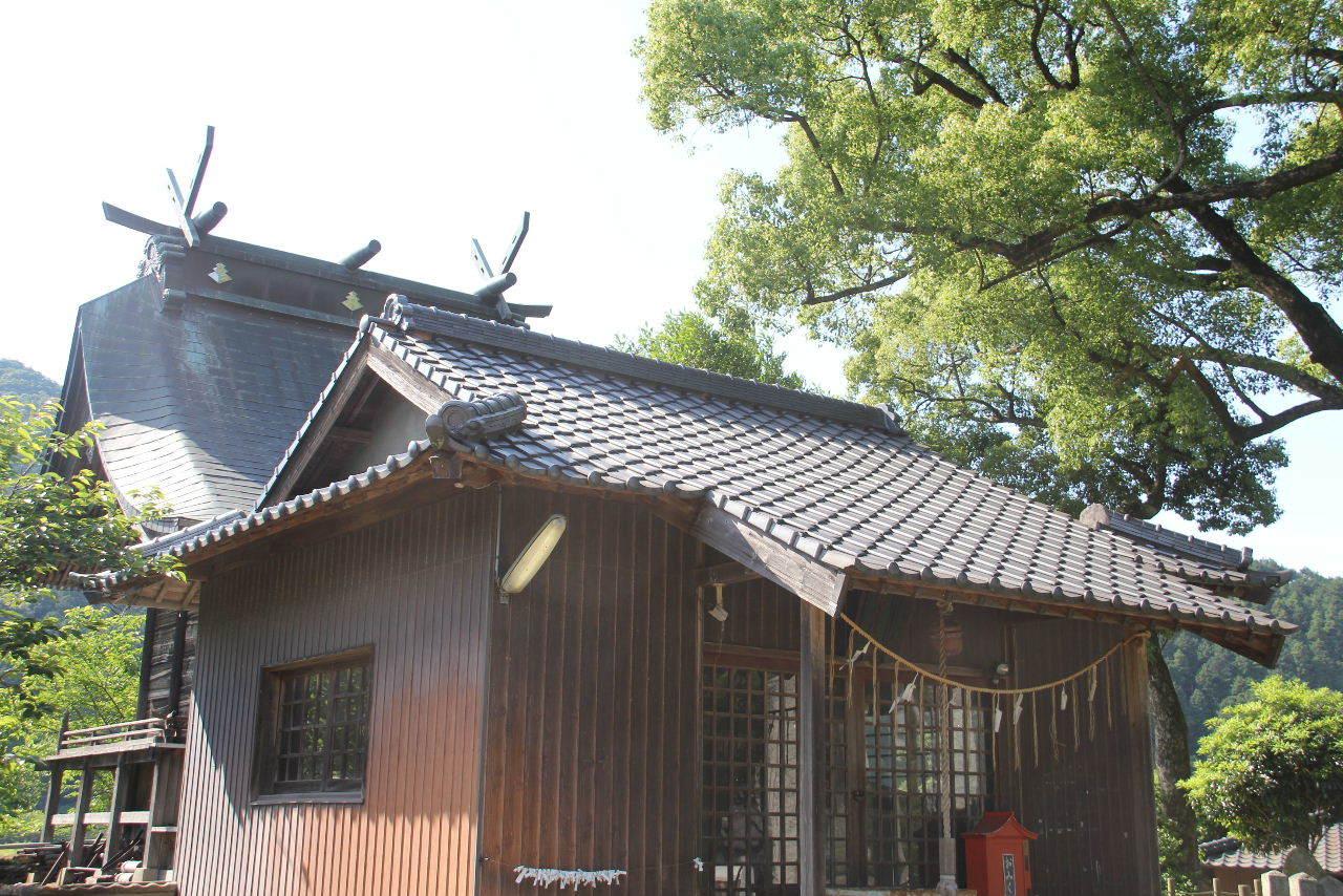 大楠神社と本庄の大楠_c0011649_22414108.jpg
