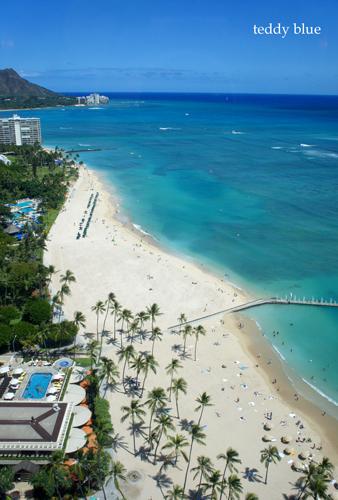 Hawaii trip 2017  ハワイトリップ vol.1_e0253364_13552723.jpg