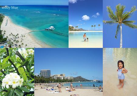 Hawaii trip 2017  ハワイトリップ vol.1_e0253364_13580573.jpg