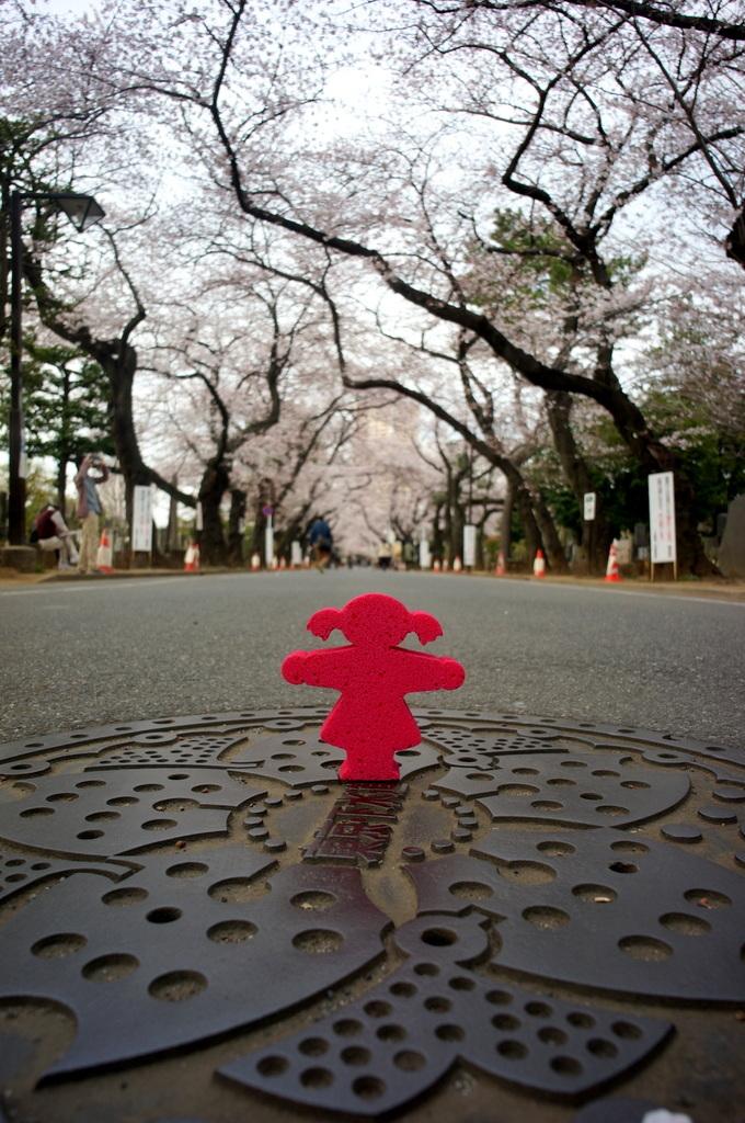 東京Vol.3 (2016年春)上野桜木「あたり」_c0180686_03090217.jpg