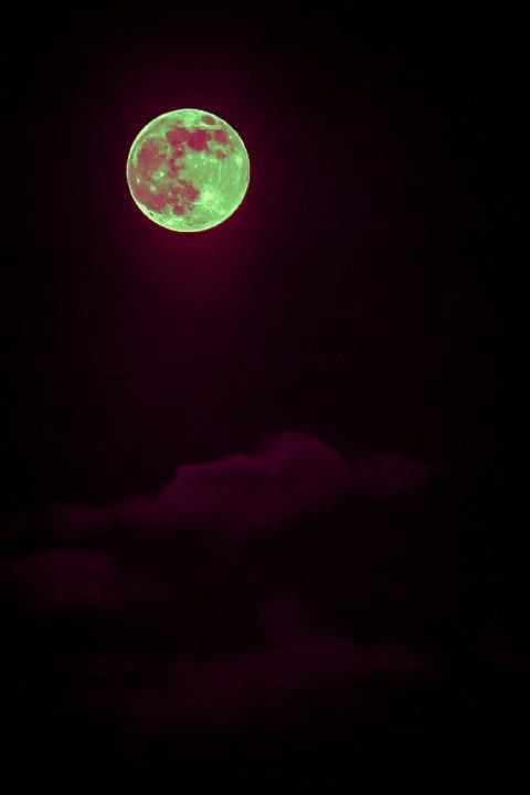 "How high the \""strawberry\"" moon_d0353489_2128063.jpg"