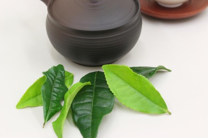 暮らしに素敵な日本茶を! 6月_b0220318_04092714.jpg