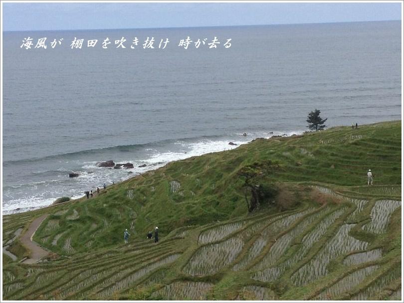海風が_d0037232_21515006.jpeg