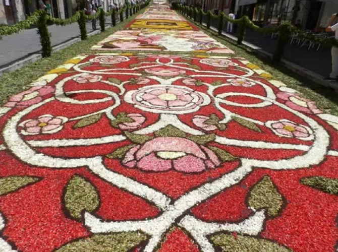 Infiorata di Genzano di Roma(ローマの町、ジェンツァーノの花祭り)_f0172744_1371117.jpg