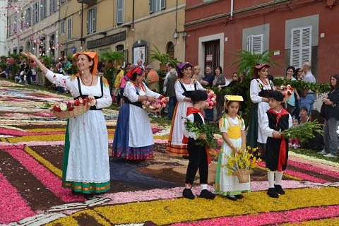 Infiorata di Genzano di Roma(ローマの町、ジェンツァーノの花祭り)_f0172744_138036.jpg