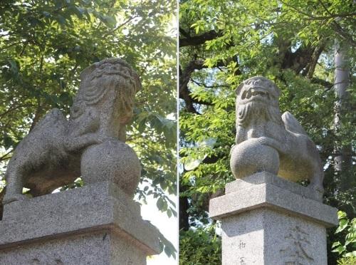 大楠神社と本庄の大楠_c0011649_00025311.jpg