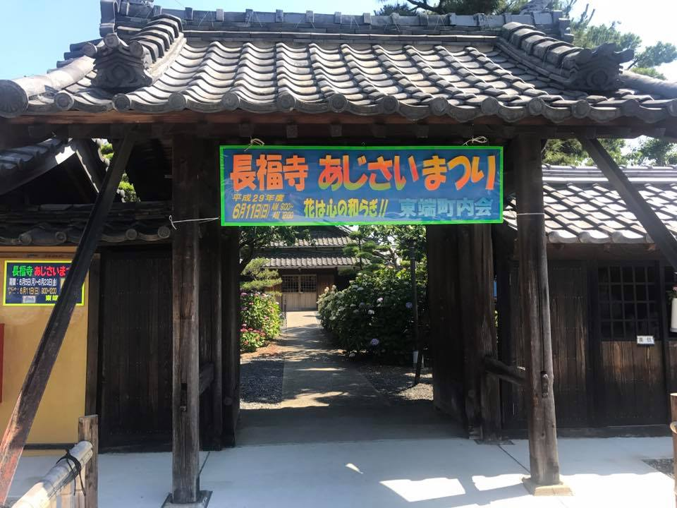 碧南 油が淵→安城 長福寺 お花めぐり_f0109257_8463447.jpg
