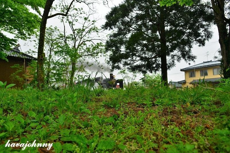 雨乞い目線_c0173762_20084749.jpg
