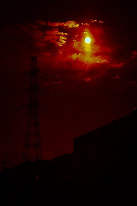 "How high the \""strawberry\"" moon_d0353489_18502215.jpg"