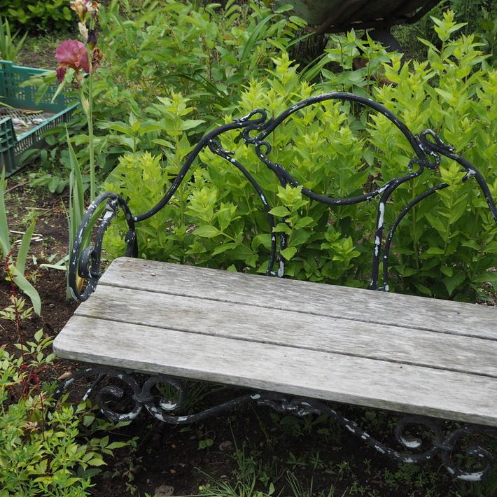 お庭作り_a0292194_2392128.jpg