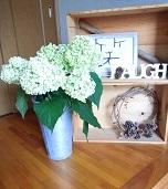 花を飾る_b0213795_18551766.jpg