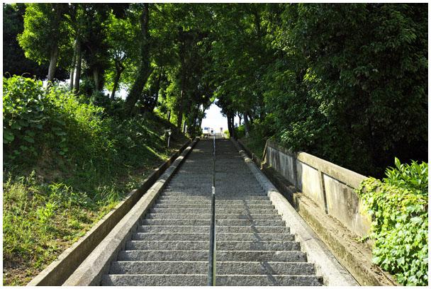 「お城ネコさんぽ」写真展_d0272207_210367.jpg
