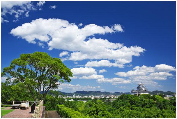 「お城ネコさんぽ」写真展_d0272207_219080.jpg