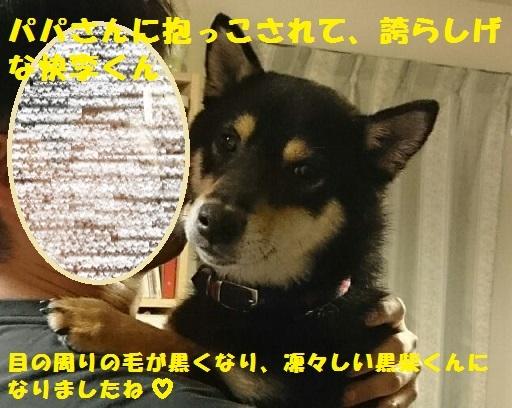 f0121712_21450877.jpg