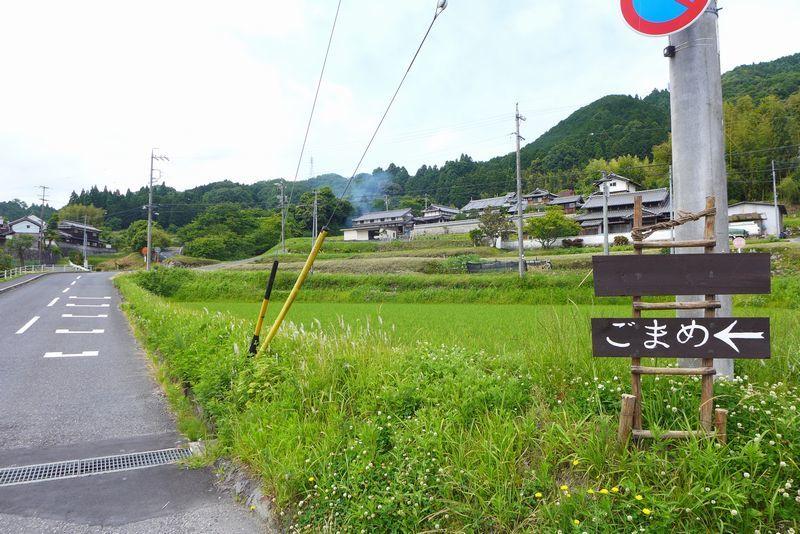 「こまめ」さん (三重県名張市)_d0108737_20193042.jpg