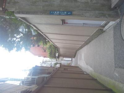 写真 色々 a lot of photos_b0136144_00305231.jpg
