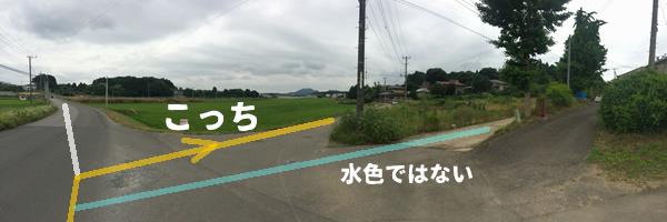 コンタクト_c0177665_11025961.jpg