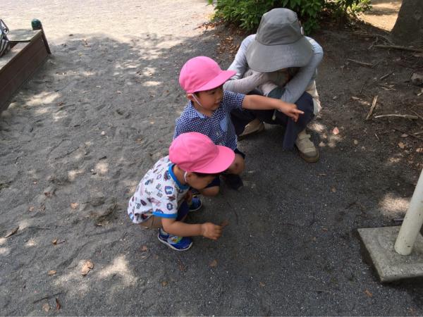 リトルピエノ保育園  6月の様子_a0318871_08455498.jpg
