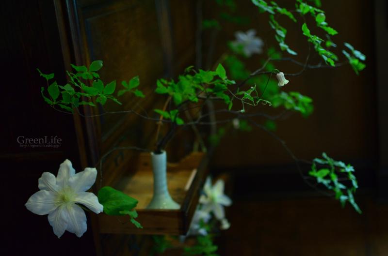 花と器のハーモニー 2017_f0321522_11355162.jpg