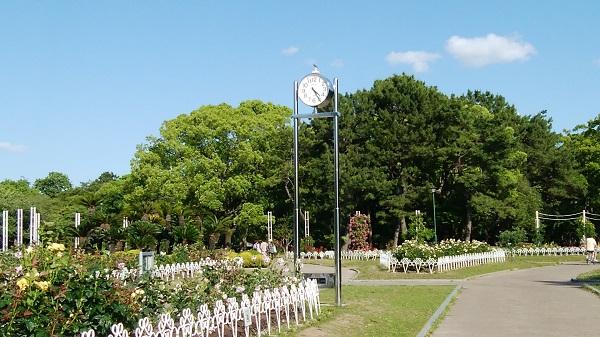 鶴舞公園散歩_a0098746_9563788.jpg