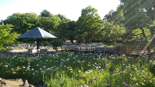 鶴舞公園散歩_a0098746_958767.jpg