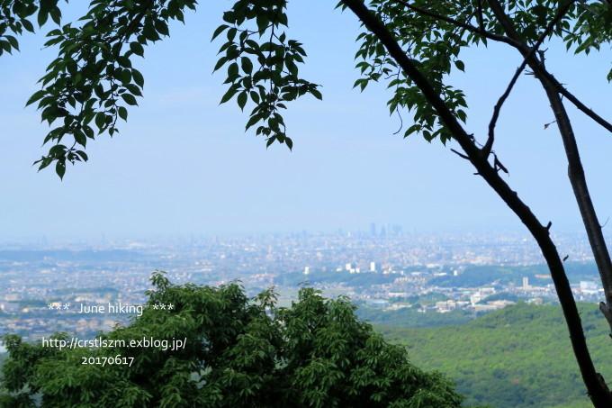 ひとり山歩き 6月の道_e0348754_17593908.jpg