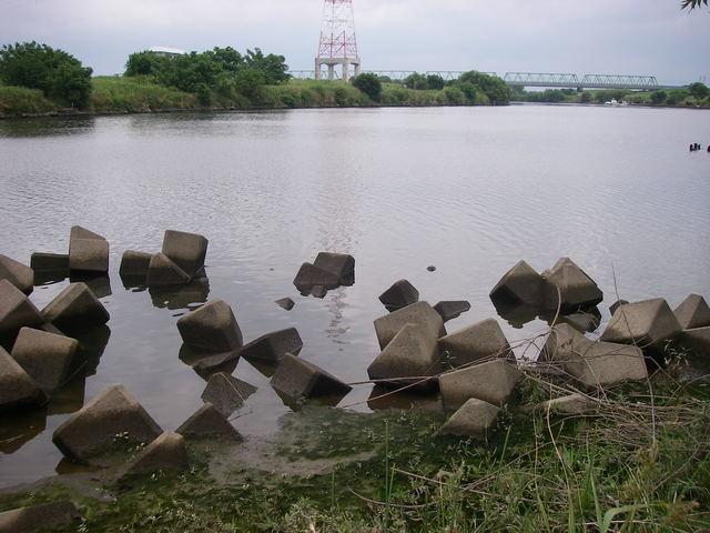 2017年、テナガエビ釣りの1_a0074069_16114789.jpg