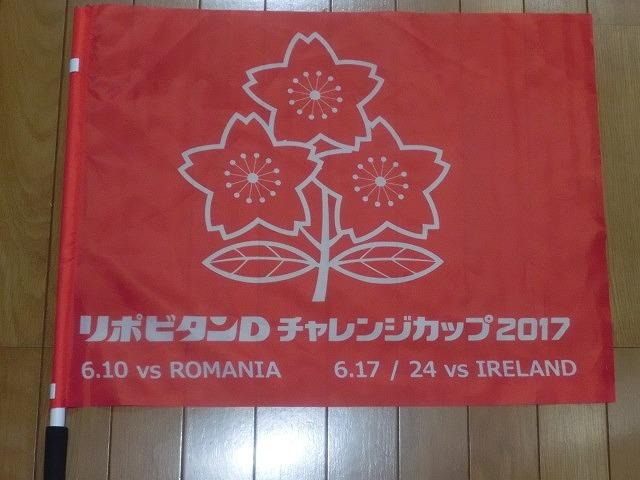 日本は22-50で完敗 「日本VSアイルランド」 24日(土)の第2戦は緊迫したゲームを期待_f0141310_07254492.jpg