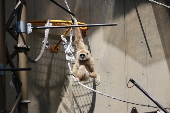 【旭山動物園(1)】北海道旅行 - 7 -_f0348831_18363035.jpg