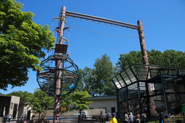 【旭山動物園(1)】北海道旅行 - 7 -_f0348831_18370411.jpg