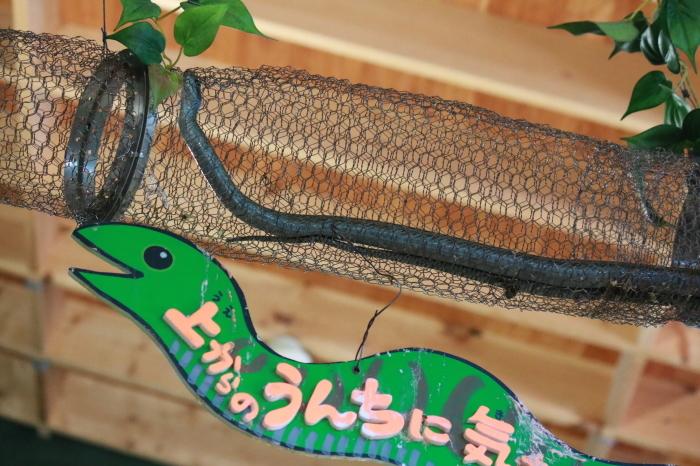 【旭山動物園(2)】北海道旅行 - 8 -_f0348831_20463576.jpg