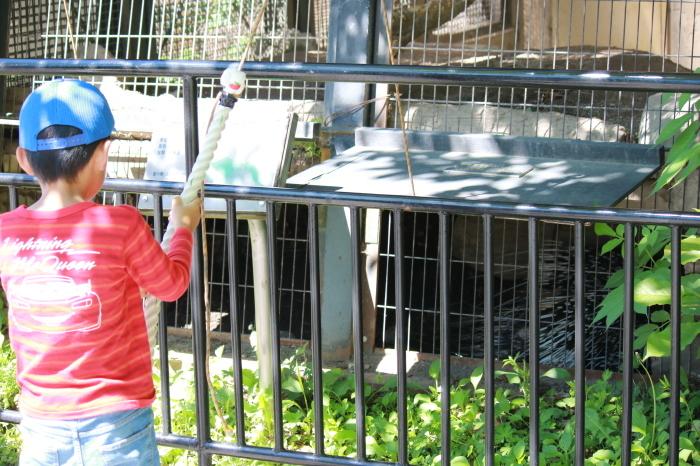 【旭山動物園(2)】北海道旅行 - 8 -_f0348831_20470316.jpg