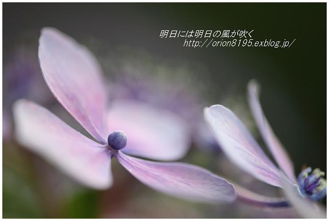 f0361079_23282031.jpg