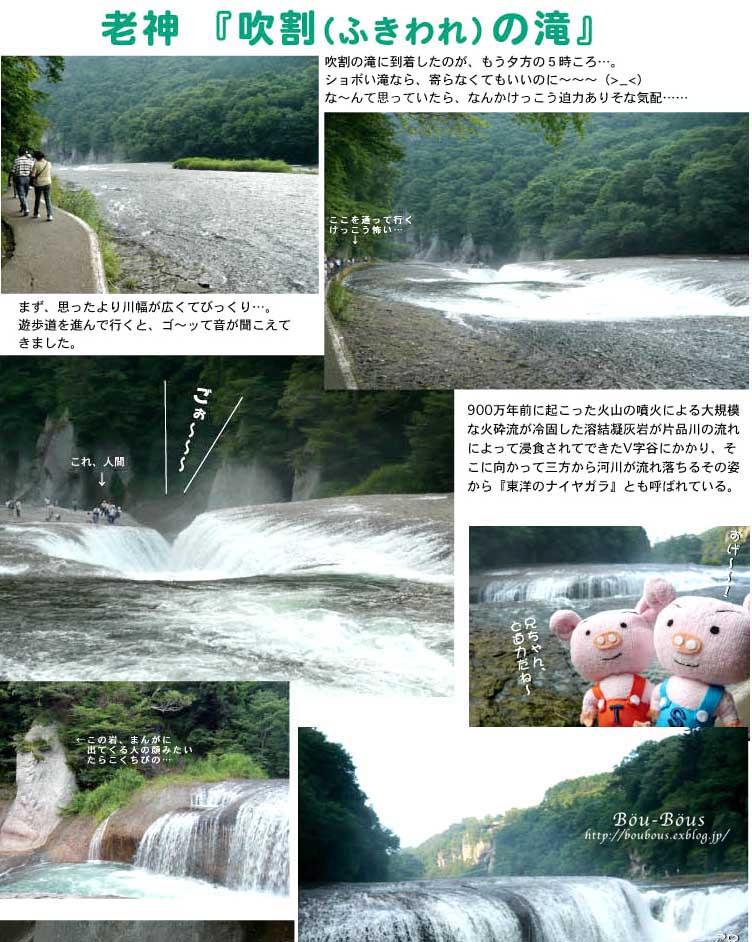 ツアメンさんの写真と過去の写真_d0128697_0291414.jpg