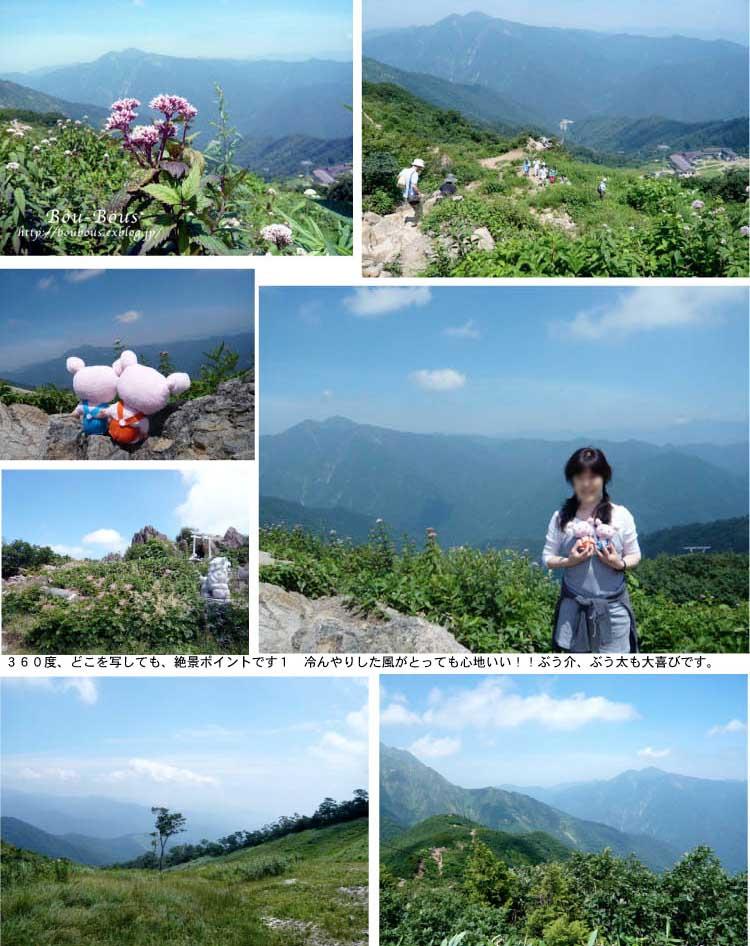 ツアメンさんの写真と過去の写真_d0128697_029148.jpg