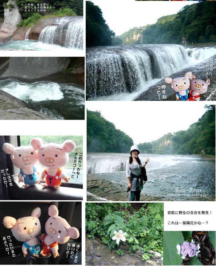 ツアメンさんの写真と過去の写真_d0128697_0291741.jpg