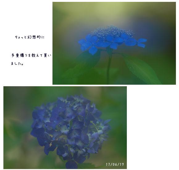 c0051105_1820756.jpg