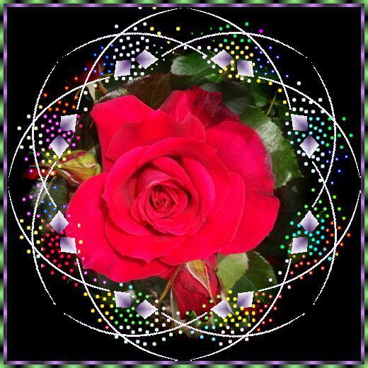 f0132006_14124941.jpg